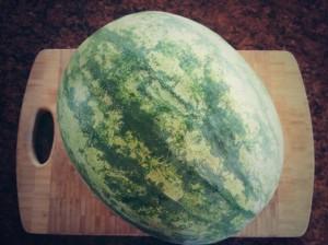 "Meet ""Walter"" the Watermelon!"